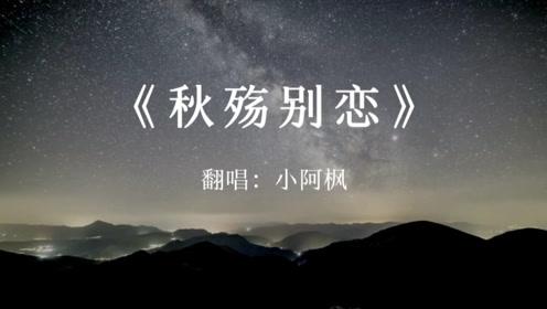 小阿枫:《秋殇别恋》翻唱版,唱出了个性!