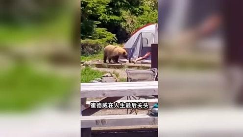 他和熊生活13年,最终成为熊的盘中餐