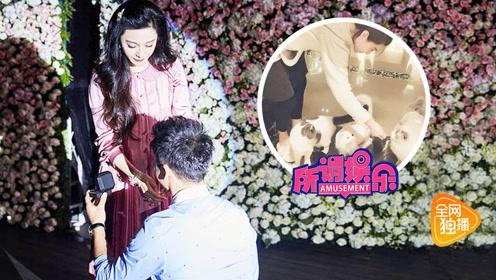 正片:范冰冰李晨婚房似皇宫 杨紫瘦到胸前有肋骨