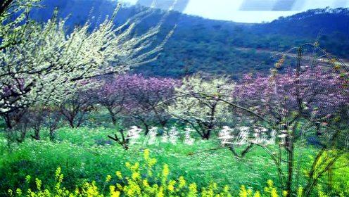 云南旅游之花荟泸西 漫步最美古村