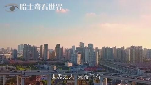 华人华裔华侨到底区别在哪里很多人到现在都