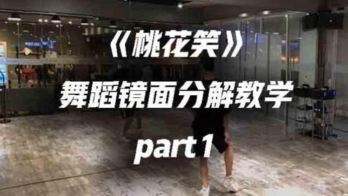 白小白《桃花笑》舞蹈镜面分解教学part1