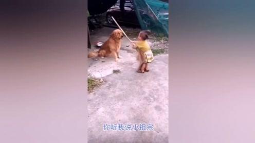 动物的那些搞笑事情!