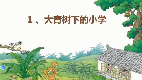 三年級語文上冊1  大青樹下的小學