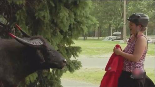 恶搞:路人帮忙用布遮挡,放下时一头牛吓到了