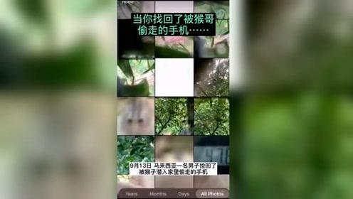 """马来西亚一猴子偷手机后疯狂自拍 难道是""""猴"""""""