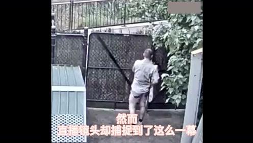 外国小哥被动物园直播摄像头意外拍到,瞬间火遍外网!!