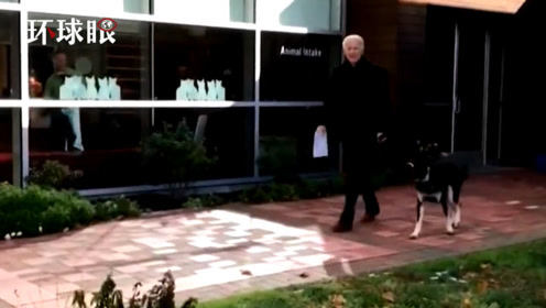外媒:拜登與狗玩耍時滑倒并扭傷腳踝,將接受骨科檢查