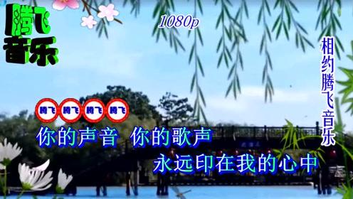 经典歌曲--巨星李谷一 - 乡恋1979年版--蓝光(10