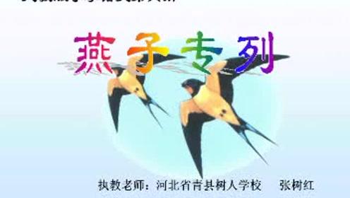 三年级语文下册6 燕子专列