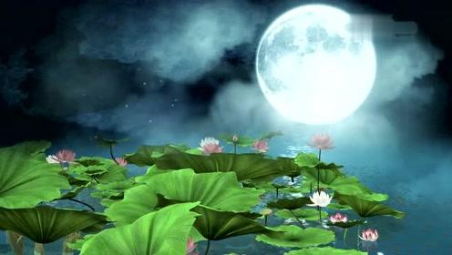 唯美荷塘月色,中国风荷花月亮民族民乐舞蹈LED!