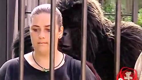 国外搞笑视频,假扮大猩猩恶搞游客真的被,吓