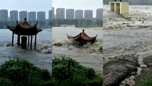 """終于堅持不住!""""利奇馬""""吹來大洪水,山東臨朐一涼亭墜河散架"""