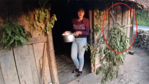 为何老挝女子会在门口挂树枝?到底是啥意思?进去了千万别后悔