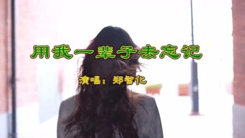 《用我一辈子去忘记》郑智化 视频歌曲