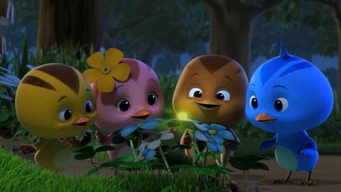 萌鸡小队:萤火虫好漂亮,萌鸡好喜欢
