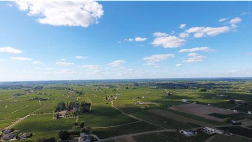 小伙首次航拍法国著名葡萄酒产地,上帝视角展示一望无际的葡萄园