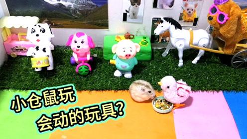 搞笑视频:小仓鼠面对一群会蹦的动物玩具会发