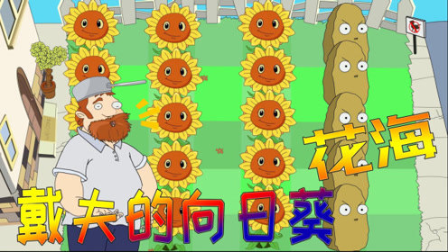 植物大战僵尸搞笑动画:戴夫种的向日葵花海