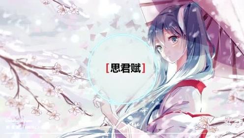 旋律优美的中国风纯音乐,还是HIFI无损,建议50元+耳机试听