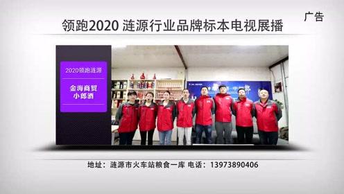 领跑涟源2020涟源行业品牌电视展播