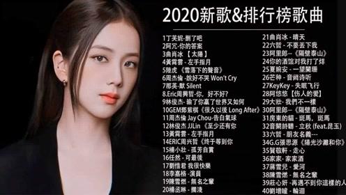 【抖音经典歌曲2020】华语流行音乐歌曲1000首 -Tiktok热门歌曲精选集#11