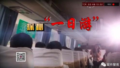 """看·法 100元游上海?""""旅社""""涉嫌诈骗被一窝端"""