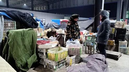 鹏鹏凌晨四点,鹏鹏和媳妇去批发市场,进山楂准备穿糖葫芦卖