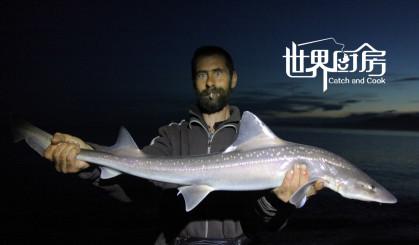 战斗技能爆表,这个新西兰猎人竟然用拳头打晕鲨鱼