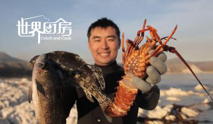 在新西兰想吃龙虾不用花钱买,跳到海里徒手就能捉到