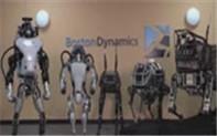 波士顿智能机器人要逆天了