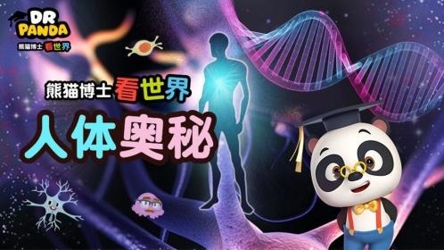 5折·熊猫博士人体奥秘