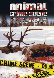 动物犯罪现场