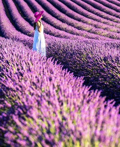 世界上最浪漫的国度法兰西