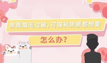 【喵客帝国】男票对猫毛过敏怎么办