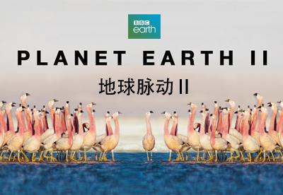 地球脉动 第2季