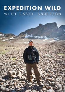 荒野远征第一季
