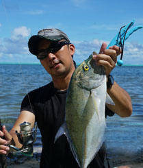 太平洋海岛舟钓蓝鳍鯵