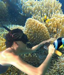 女下海浮潜徒手抓小丑鱼