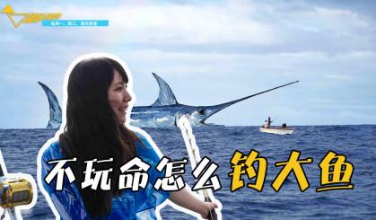 印度洋海钓金枪鱼上钩800斤剑鱼 5名大汉狂钓6小时险些把船压翻