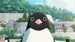 企鹅公路·先导预告