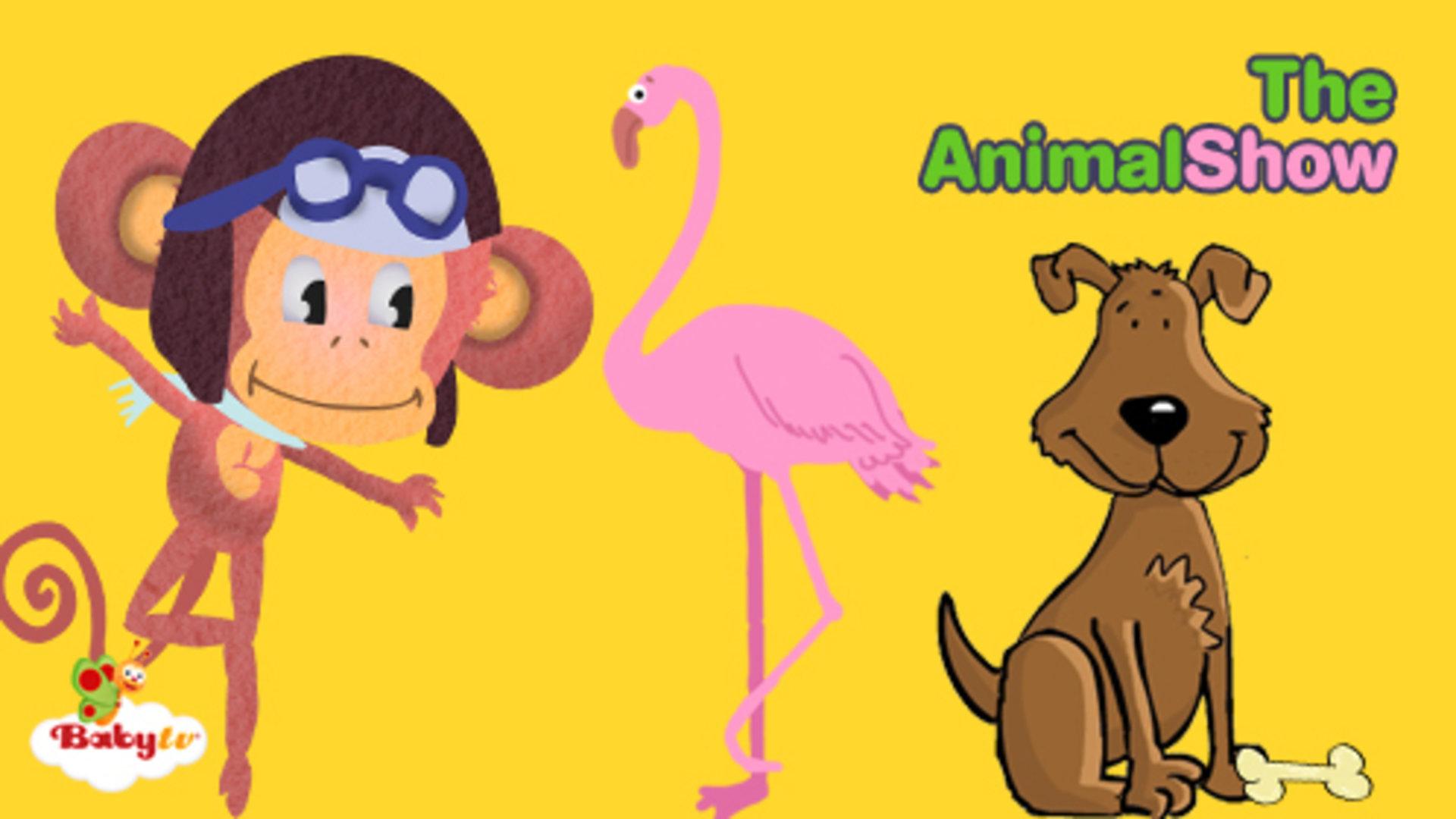 学习关于宠物的东西,并发现你最喜欢的动物喜欢吃什么.