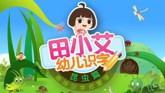 幼儿识字趣味汉字启蒙课