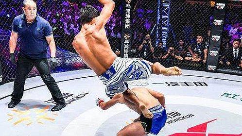 MMA最炫飞身踢
