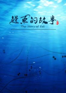 鳗鱼的故事