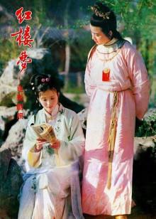 红楼梦2黛玉葬花(爱情片)