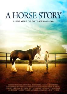 关于一匹马的故事
