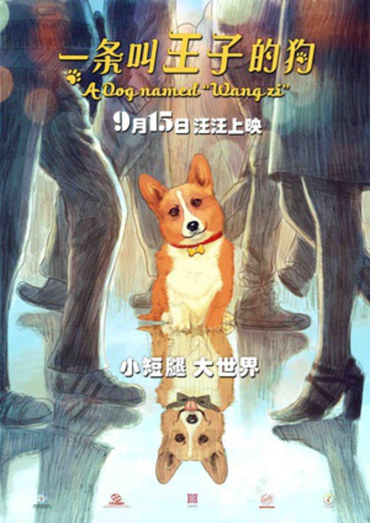 《一条叫王子的狗》电影高清在线观看