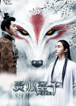 灵狐圣子1:圣子出世
