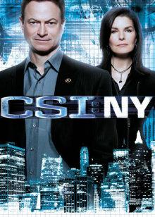 犯罪现场调查:纽约 第9季在线观看